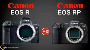 Canon EOS R vs Canon EOS RP Camera Specs Comparison